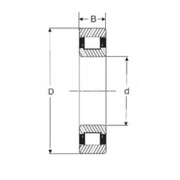 40 mm x 80 mm x 23 mm  SIGMA N 2208 cylindrical roller bearings